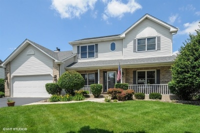 Plainfield Single Family Home New: 25004 Blakely Drive