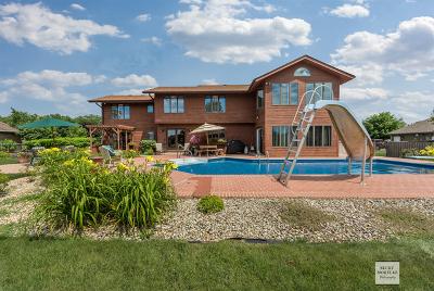 Plainfield Single Family Home New: 25111 West Pauline Drive
