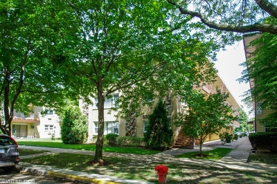 Chicago Condo/Townhouse New: 5332 West Windsor Avenue #2C