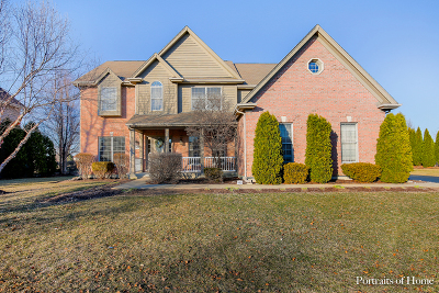 Kane County Single Family Home New: 2089 Wild Dunes Court