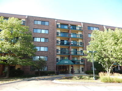 Hoffman Estates Condo/Townhouse New: 1800 Huntington Boulevard #AE615