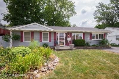 Romeoville Single Family Home New: 729 Farragut Avenue