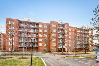 Chicago IL Condo/Townhouse New: $209,900