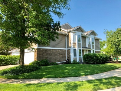 Buffalo Grove Condo/Townhouse New: 290 Brunswick Drive