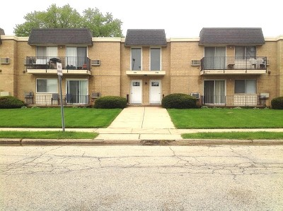 Arlington Heights Condo/Townhouse New: 1430 North Evergreen Avenue #2AS