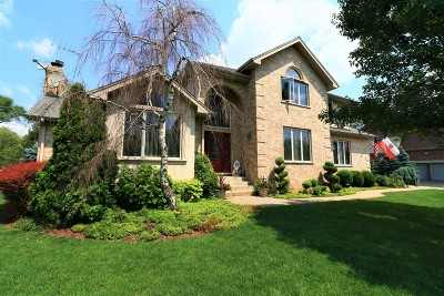 Burr Ridge Single Family Home New: 15w734 74th Street
