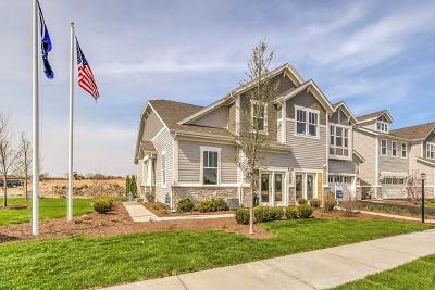 Glen Ellyn Condo/Townhouse New: 22w420 Autumn Blaze Lot #4.01 Drive