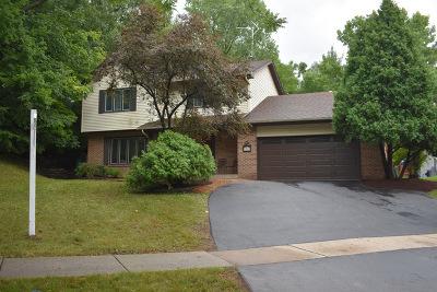 Woodridge Single Family Home For Sale: 3203 Everglade Avenue