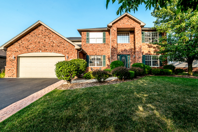Will County Single Family Home New: 16441 South Lakeview Drive