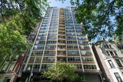 Chicago IL Condo/Townhouse New: $317,500