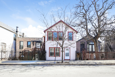 Chicago Multi Family Home For Sale: 1725 South Desplaines Street