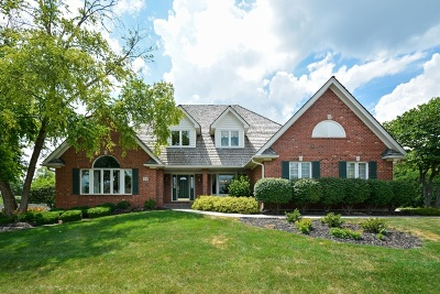 Lemont Single Family Home For Sale: 28 Ruffled Feathers Drive
