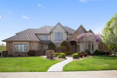 Frankfort Single Family Home For Sale: 23054 Sun River Drive