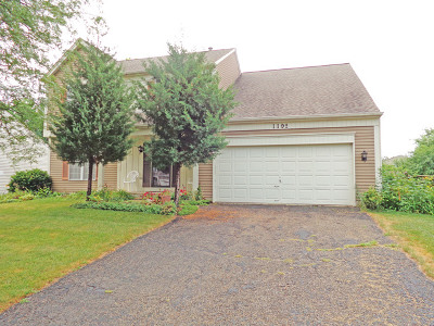 Carol Stream Single Family Home For Sale: 1192 Cactus Trail