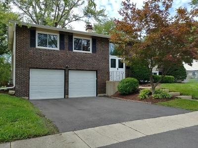 Woodridge Single Family Home For Sale: 6118 Sherman Drive