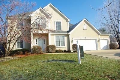 Sugar Grove Single Family Home For Sale: 994 Jennifer Court