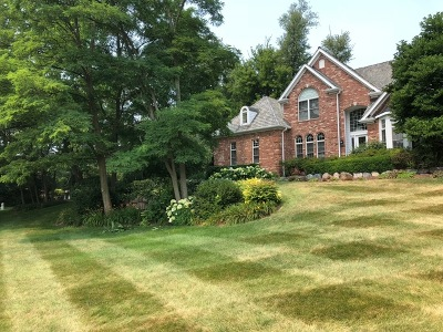 Woodstock Single Family Home For Sale: 1137 Galloway Drive