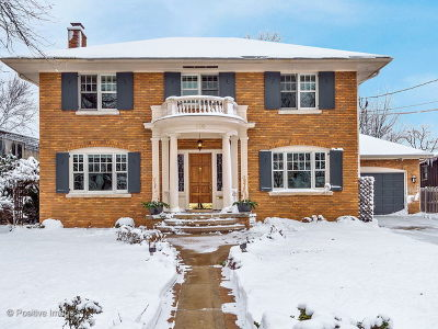 Glen Ellyn Single Family Home For Sale: 410 North Park Boulevard