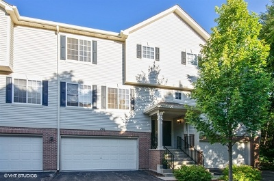Gilberts Condo/Townhouse For Sale: 296 Evergreen Circle