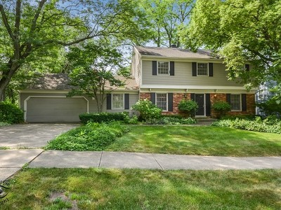 Downers Grove Single Family Home For Sale: 1231 Brookside Lane