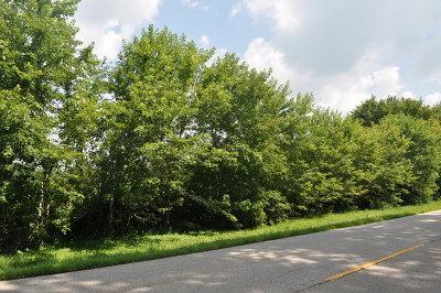 Woodstock Residential Lots & Land For Sale: Jankowski Road