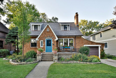 Downers Grove Single Family Home For Sale: 744 Prairie Avenue