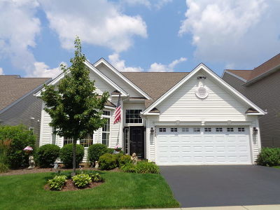 Elgin Single Family Home For Sale: 3882 Valhalla Drive
