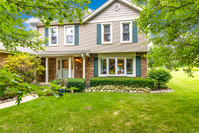 Schaumburg Single Family Home For Sale: 1416 Lincoln Street