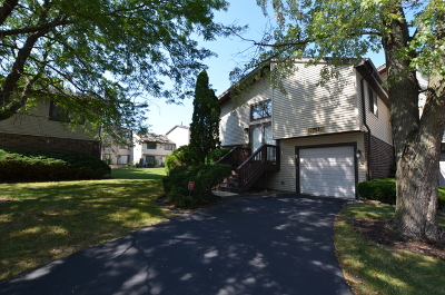 Warrenville Condo/Townhouse For Sale: 29w376 Thornwood Lane