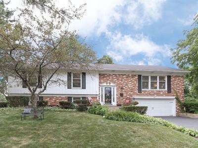 Palatine Single Family Home For Sale: 1161 West Illinois Avenue