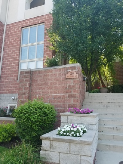 Forest Park Condo/Townhouse For Sale: 210 Des Plaines Avenue #C