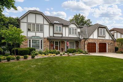 Wheaton Single Family Home For Sale: 115 Hawkins Circle