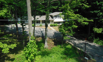 St. Charles Single Family Home For Sale: 4n150 Thorntree Road