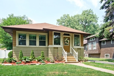 Elmhurst Single Family Home Price Change: 358 North Maple Avenue
