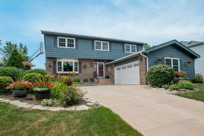 Villa Park Single Family Home For Sale: 229 East Harrison Street