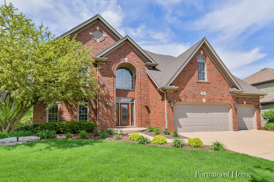 Naperville Single Family Home For Sale: 3811 Sunburst Lane