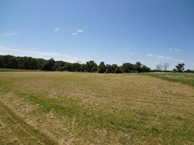 Woodstock Residential Lots & Land For Sale: 2401 Maritime Lane