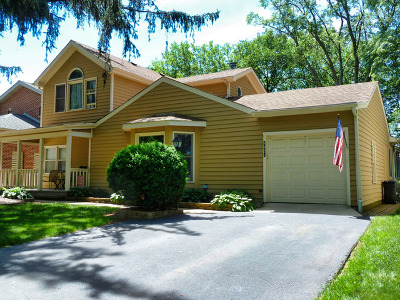Downers Grove Single Family Home For Sale: 4524 Statton Street