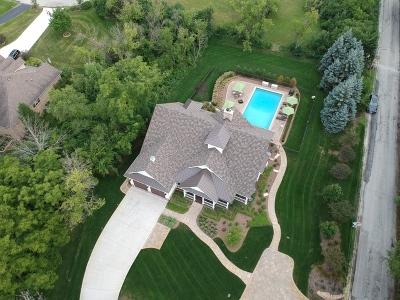 Palos Park Single Family Home For Sale: 11099 West 123rd Street