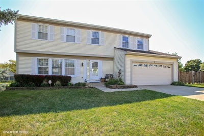 Schaumburg Single Family Home For Sale: 3 North Staffire Drive