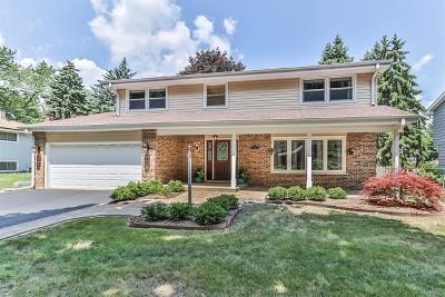 Palatine Single Family Home For Sale: 520 East Princeton Street