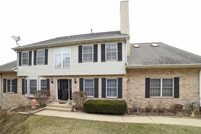 Streamwood Condo/Townhouse For Sale: 1481 Laurel Oaks Drive