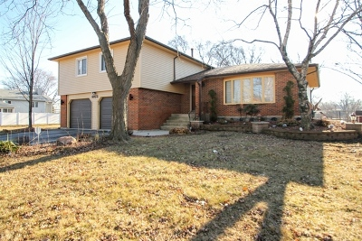 Richton Park Single Family Home Contingent: 4973 Arquilla Drive