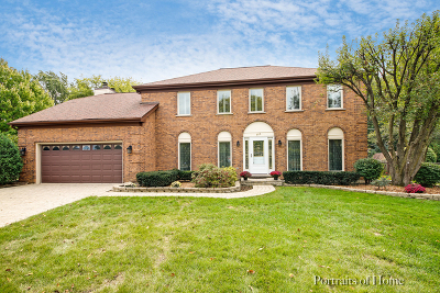 Downers Grove Single Family Home For Sale: 805 Old Orchard Avenue