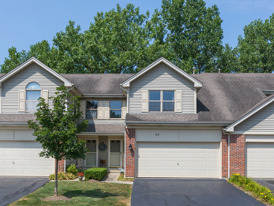 West Chicago Condo/Townhouse For Sale: 212 Woodboro Drive