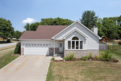 Channahon Single Family Home For Sale: 25026 West Sioux Drive
