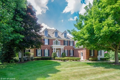 Woodstock Single Family Home For Sale: 1315 Bull Valley Drive