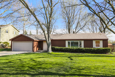 Lisle Single Family Home For Sale: 813 Gamble Drive