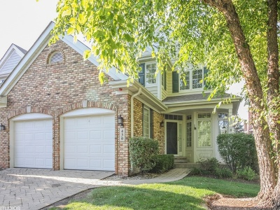 Clarendon Hills Condo/Townhouse For Sale: 430 Hill Court