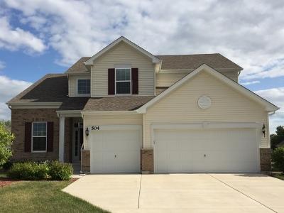 Shorewood Single Family Home For Sale: 504 Herath Lane